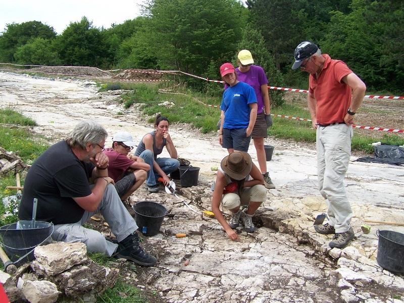 Paléontologues au travail